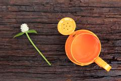 Orange watering can and globe amaranth Stock Photos