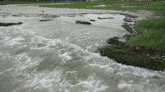 Waves Crashing On Grassy Beach Stock Footage