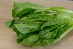 Romano salad Stock Photos
