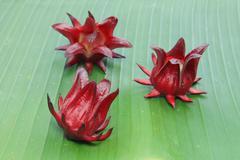 Roselle fruits on banana leaf - stock photo