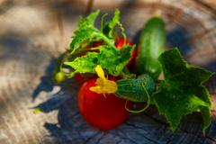 The concept of healthy eating with organic cucumber and tomatoes - stock photo