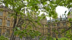 Palace of Westminster and trees, City of Westminster in London Stock Footage