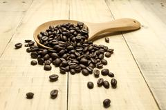 Coffee crop beans on  spoon Stock Photos
