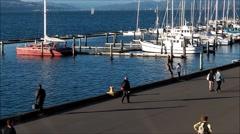 Wellington Waterfront in winter Stock Footage