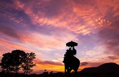 silhouette elephant with tourist at sunset - stock photo