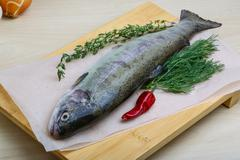 Stock Photo of Raw trout