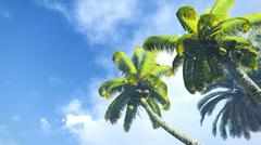 Coconut palms against blue cloudy sky - stock illustration