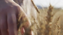 Female teen hand touch ears on the field Stock Footage