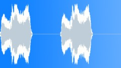 Stock Sound Effects of Seagull 26