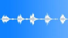 Flycatcher 60 Sound Effect