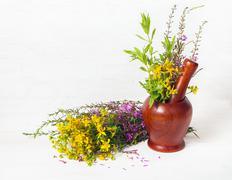 Healing herbs Stock Photos
