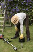 Stock Photo of Gardener starting petrol hedgecutter before cutting a hedge