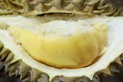 Yellow Durian - stock photo