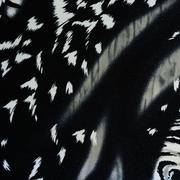 Texture of print fabric striped panther for background Stock Photos