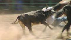 COWBOY WRESTLING CALF AT RODEO IN ROCKY MOUNTAINS Stock Footage