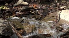 Rushing water flowing through creek 4k Stock Footage