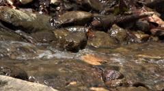 Water rushing through rocks in creek low view 4k Stock Footage
