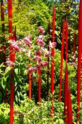 Red blown glass tubes rise among lilie - stock photo