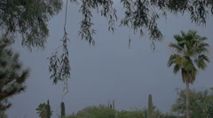 Slow motion powerful multiple lightning strikes behind trees Stock Footage