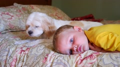 A little boy resting on a bed with dog Stock Footage