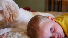A little boy resting on bed with dog Stock Footage