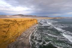 Peruvian Coastline, Paracas National Reserve - stock photo