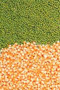 Green mung beans and corn grains Stock Photos