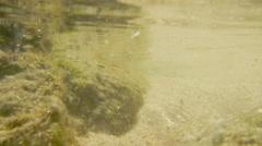Underwater Sea, Water Stock Footage