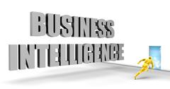 Business Intelligence Piirros