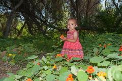 Wandering through the poppy field - stock photo
