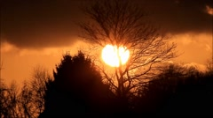 Dusk red in nature, clouds, trees - stock footage
