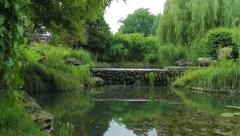 Pond in the park Stock Footage