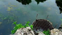 The flow of water from the pond Stock Footage