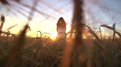 A young girl stands in a Golden field of wheat at sunset and raises his hands up Stock Footage