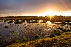 ISimangaliso Wetland Park - stock photo