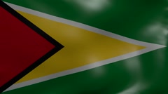 guyana strong wind flag - stock footage