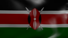 kenya wind flag - stock footage