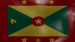 grenada strong wind flag - stock footage