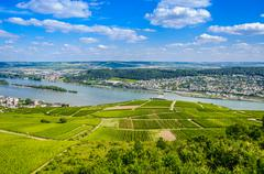 Rhine river and green vineyards near Bingen am Rhein Stock Photos