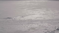 Wind and snow on frozen lake - stock footage