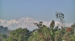 Andes montain beyond the trees - stock footage