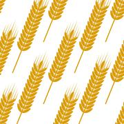 Seamless yellow ears with ripe grains pattern - stock illustration