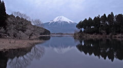 Lake Tanuki evening view of Fujiyama Stock Footage