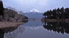 Lake Tanuki evening view of Fujiyama - stock footage