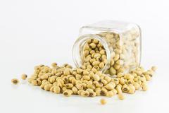 Bottle full of Soybeans - stock photo