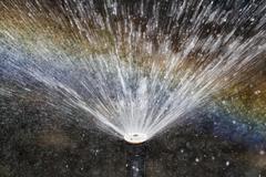 Sprinkler head watering in garden. Kuvituskuvat