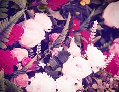 Pink roses on vintage style Stock Photos