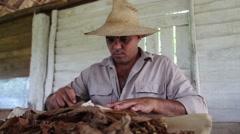 A Cuban farmer rolls a traditional cuban cigar Stock Footage