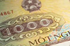 Banknote in one thousand Vietnamese dong close up - stock photo
