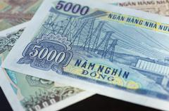 Banknote in five thousand Vietnamese dong close up Stock Photos